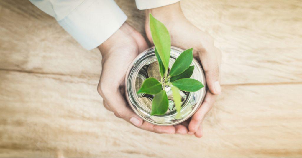 canslim - canslim method - illustration mains pièces plantes